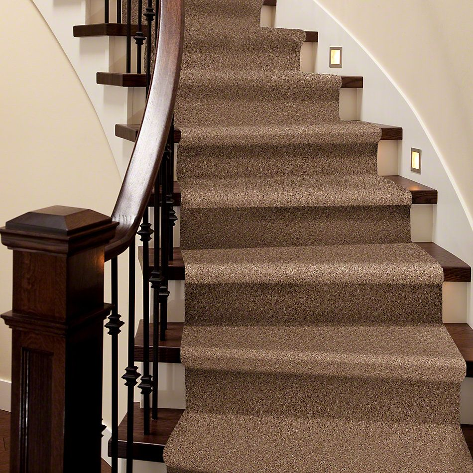 Shaw Floors Shaw Flooring Gallery In The Zone (s) Vintage Tan 00724_5525G