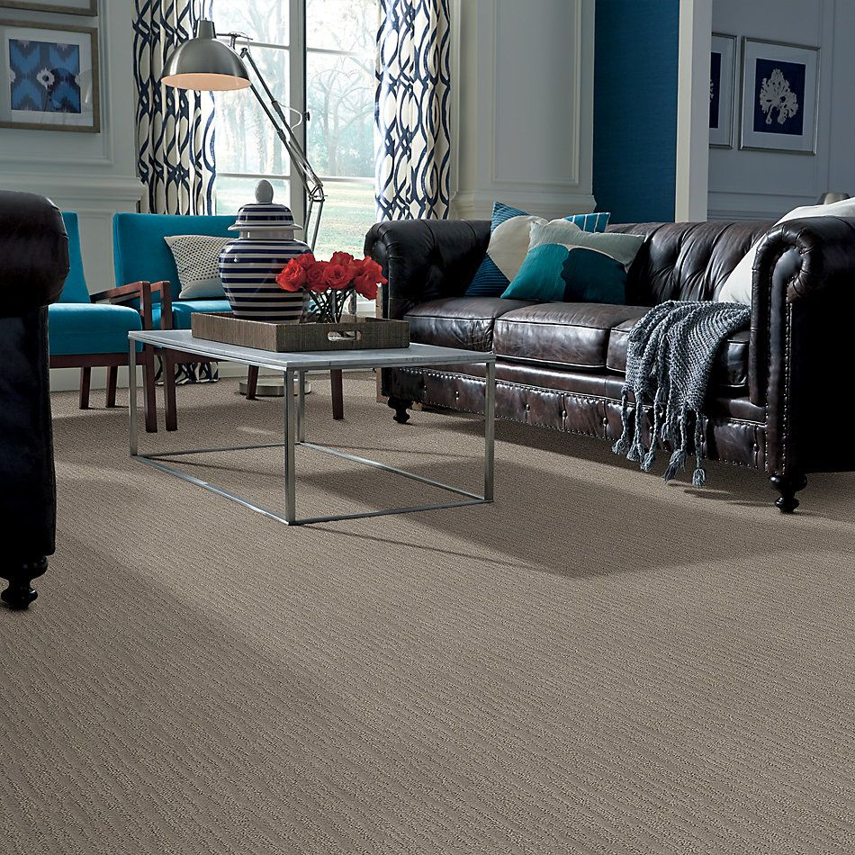 Shaw Floors Caress By Shaw On The Horizon Stucco 00724_CC64B