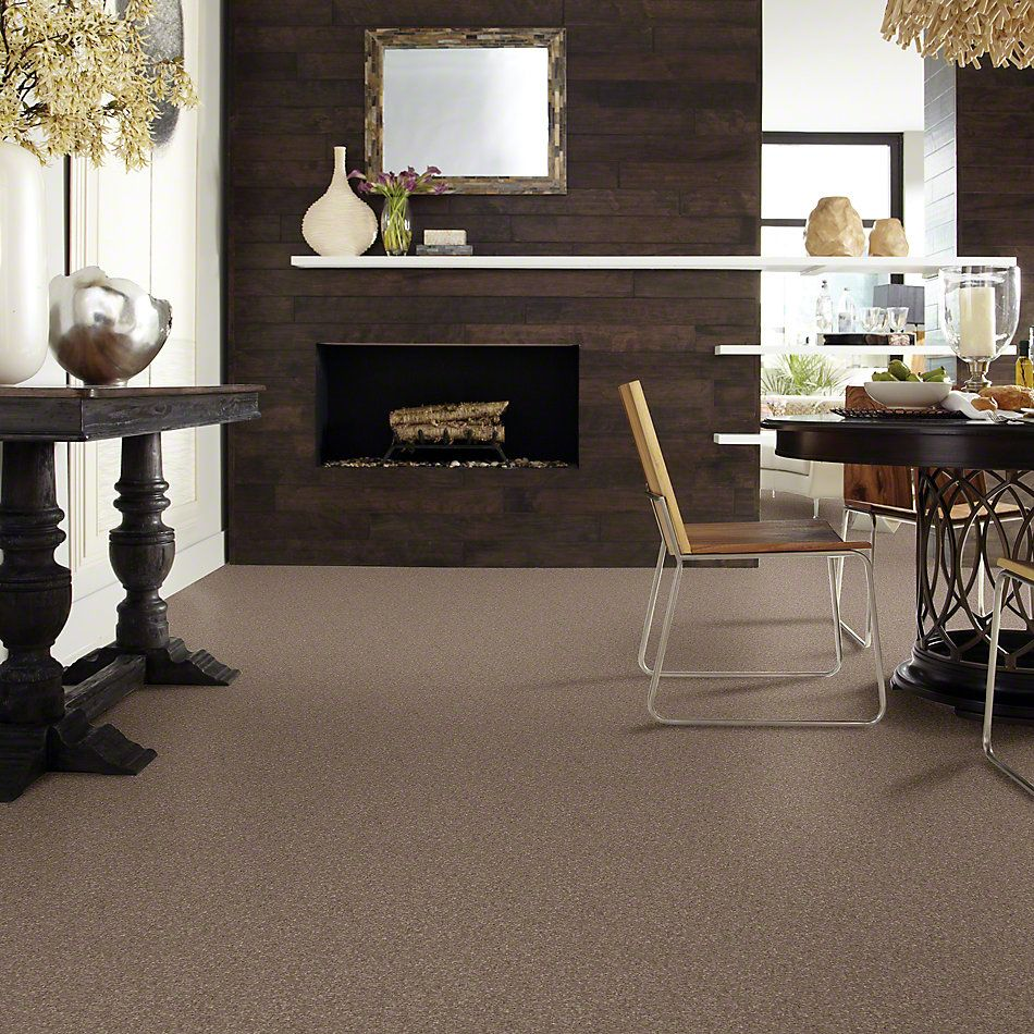 Shaw Floors Caress By Shaw Cashmere Classic III Mesquite 00724_CCS70