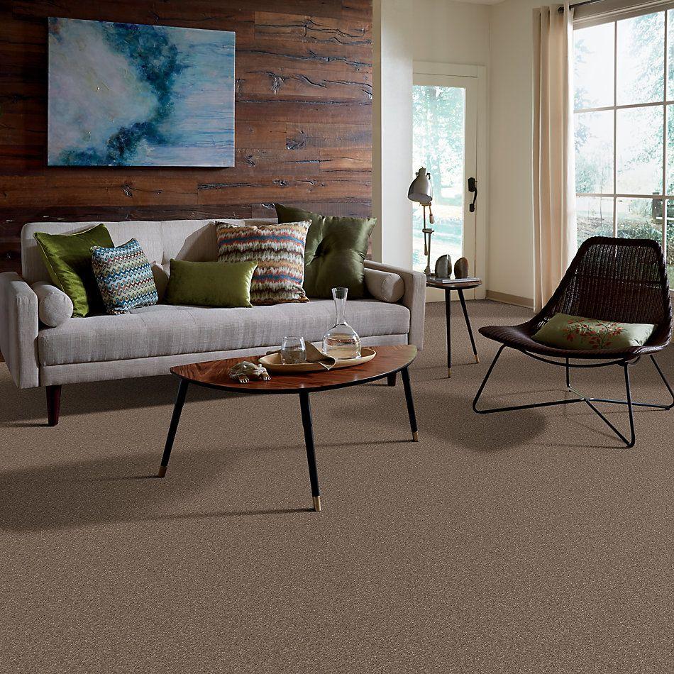 Shaw Floors Nfa/Apg Barracan Classic I Mesquite 00724_NA074