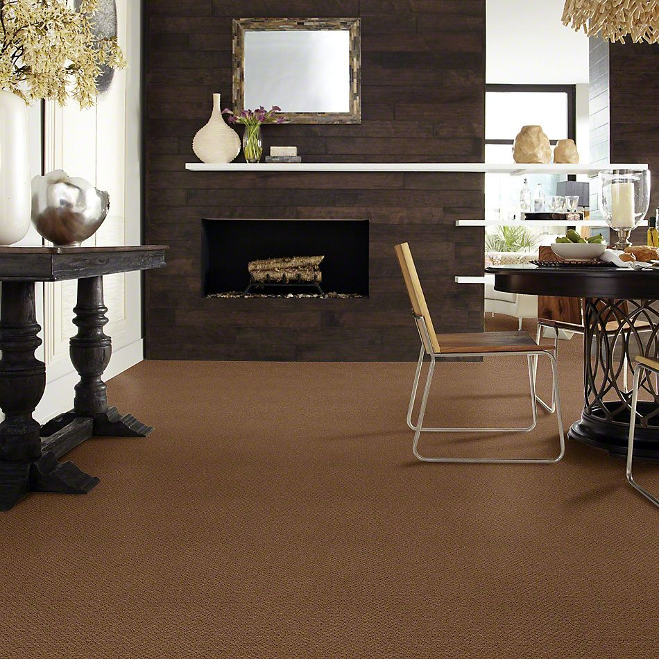 Shaw Floors Shaw Flooring Gallery Supreme Comfort Loop Cabin 00726_5469G