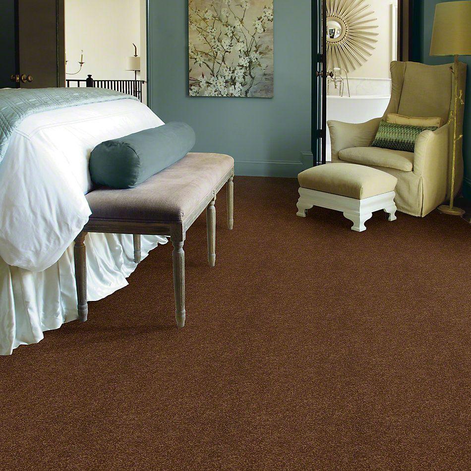 Shaw Floors Shaw Design Center Luxury Bay I Cabin 00726_5C669