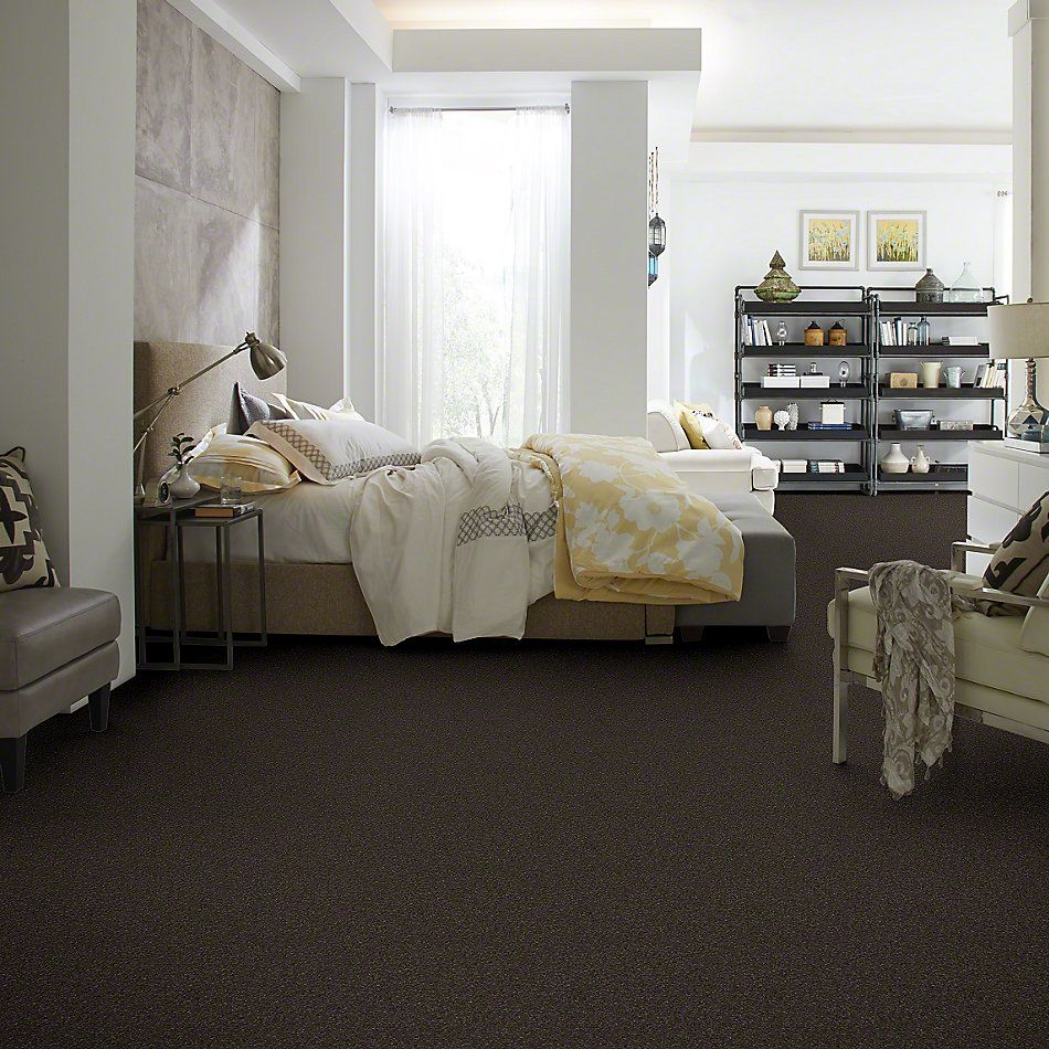 Shaw Floors Caress By Shaw Quiet Comfort Classic III Chestnut 00726_CCB98