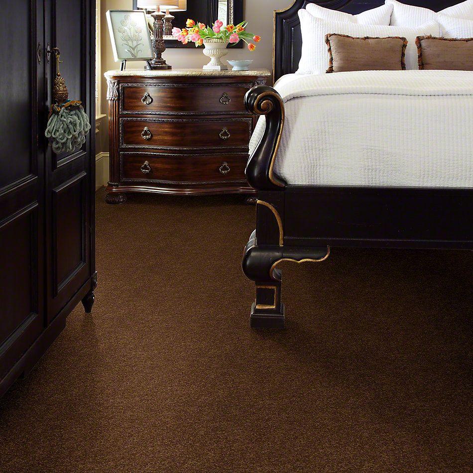 Shaw Floors Enduring Comfort II Cabin 00726_E0342