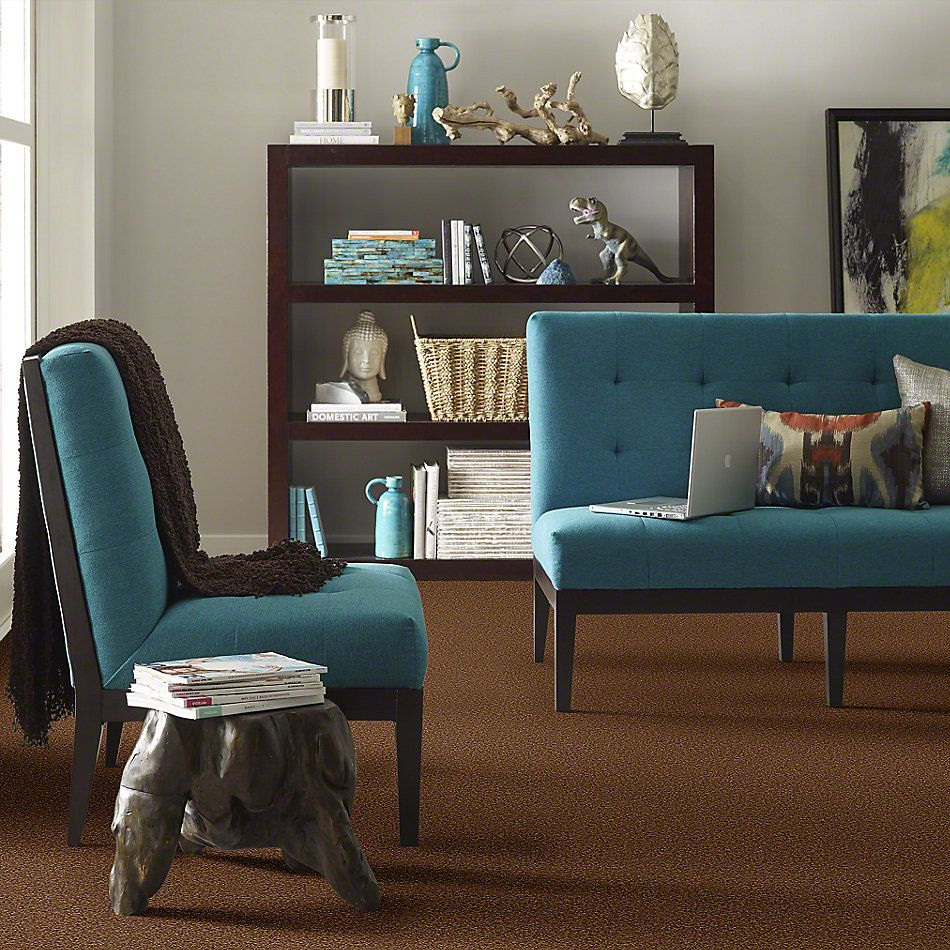 Shaw Floors Enduring Comfort III Cabin 00726_E0343