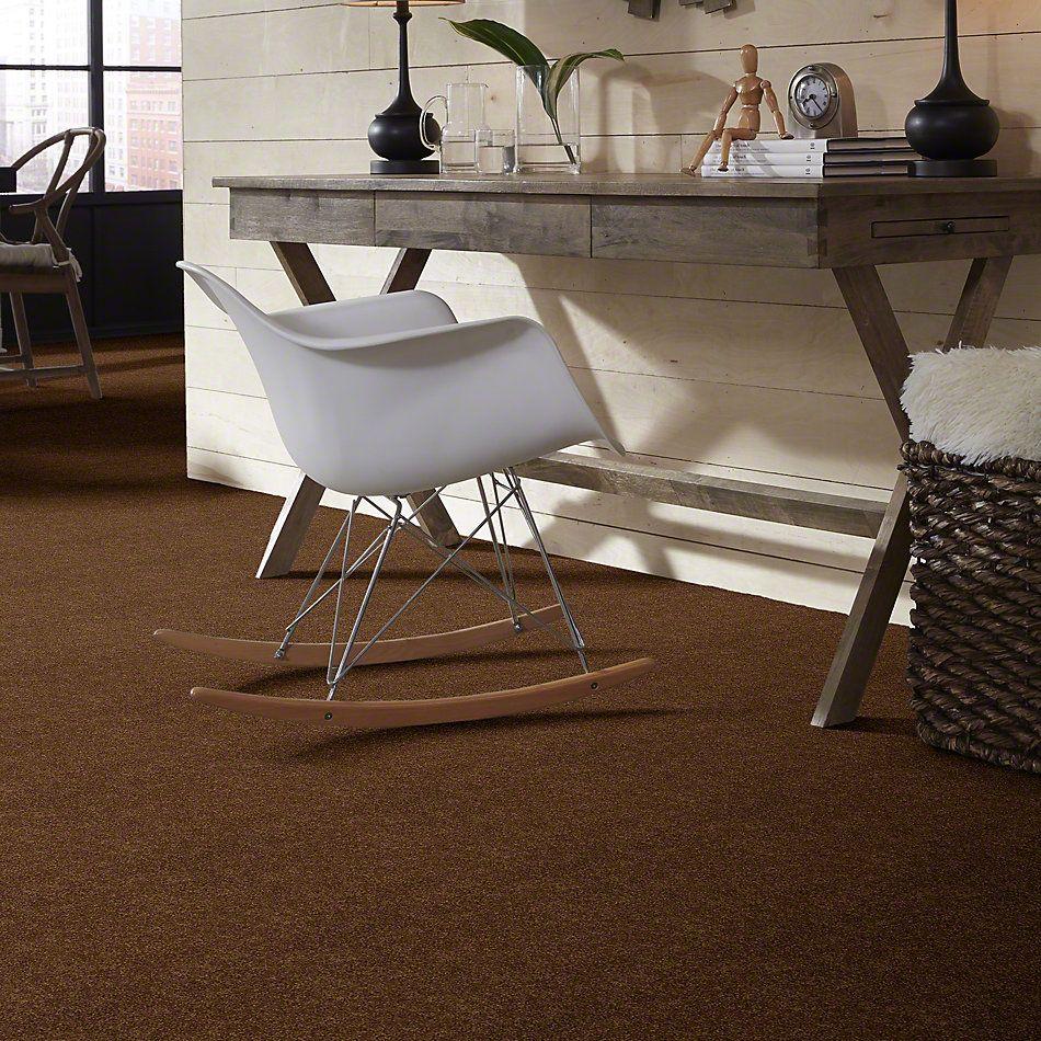 Shaw Floors SFA Loyal Beauty I Cabin 00726_EA162