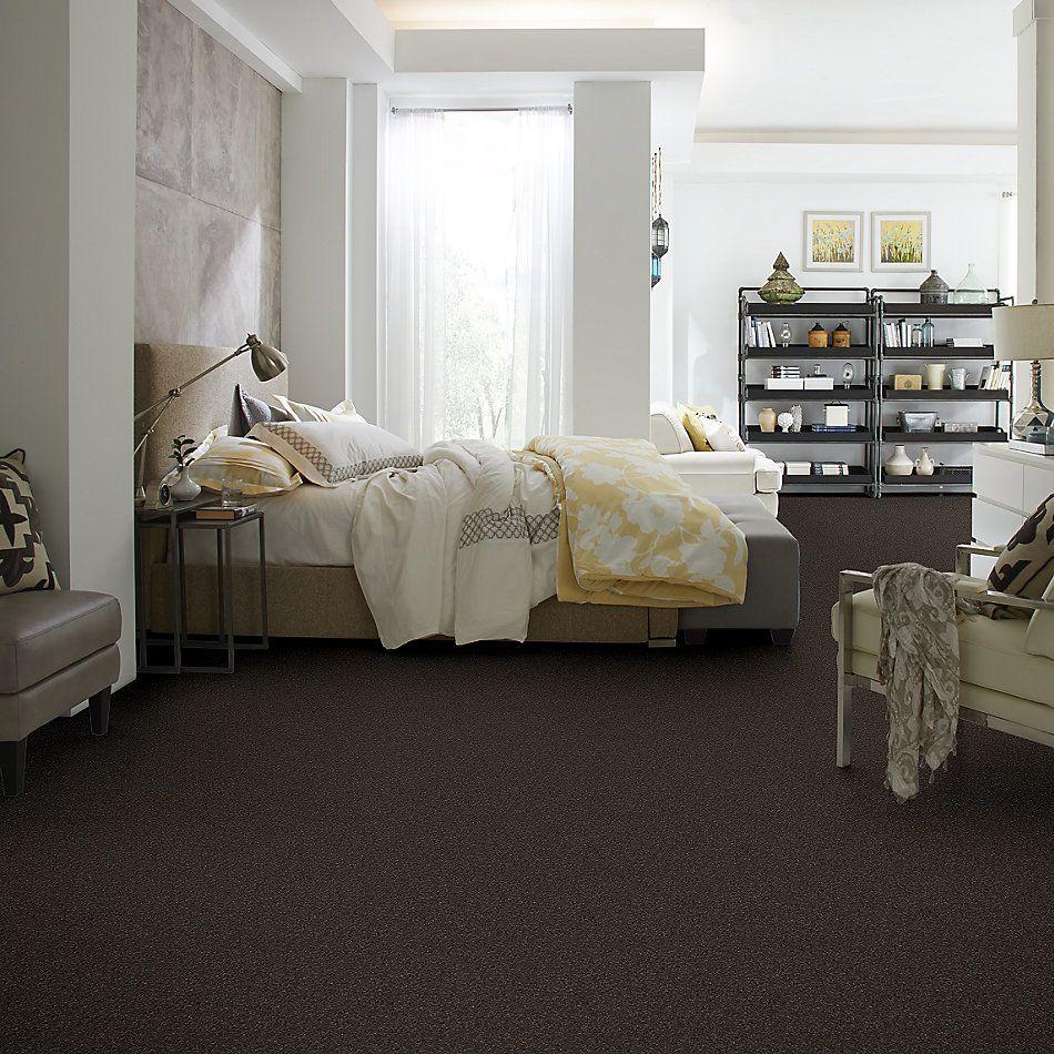 Shaw Floors Nfa/Apg Barracan Classic I Chestnut 00726_NA074