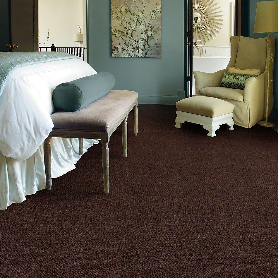 Shaw Floors Shaw Flooring Gallery Supreme Comfort Loop Apple Butter 00728_5469G