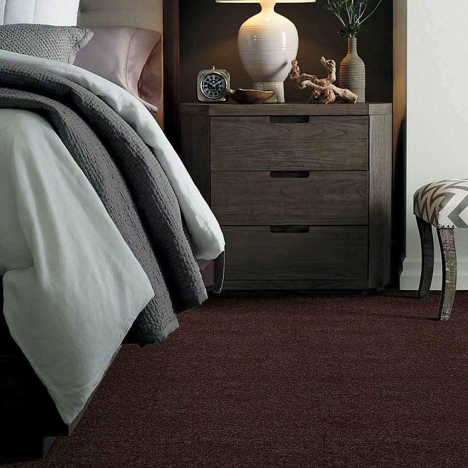 Shaw Floors SFA Loyal Beauty II Apple Butter 00728_EA163