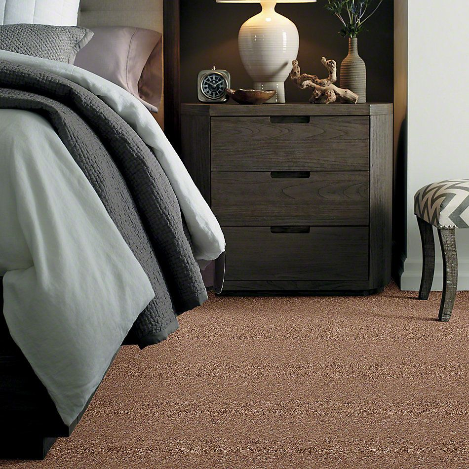 Shaw Floors Shaw Design Center Toe To Toe (s) Mocha Mist 00730_5C749