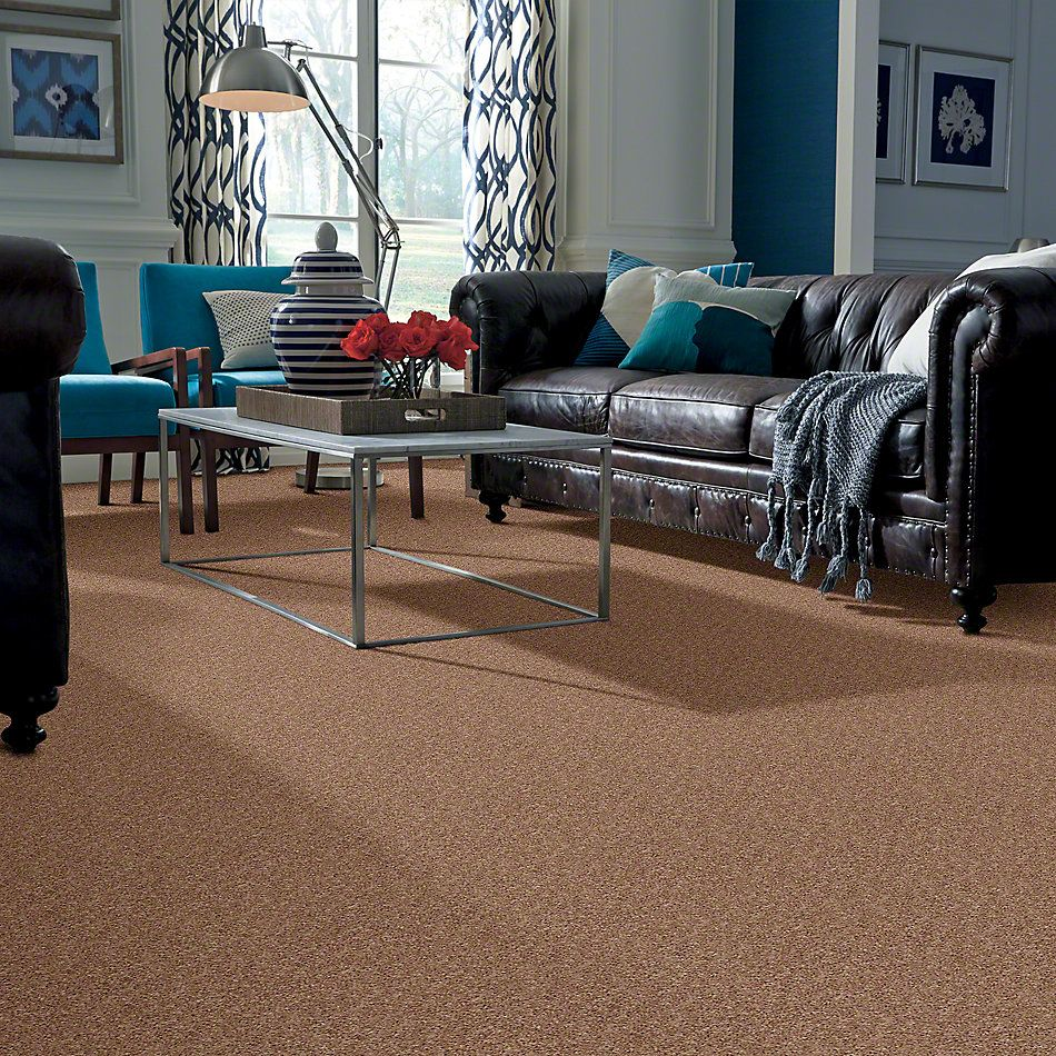 Shaw Floors Cabina Classic (s) Mocha Mist 00730_E0587
