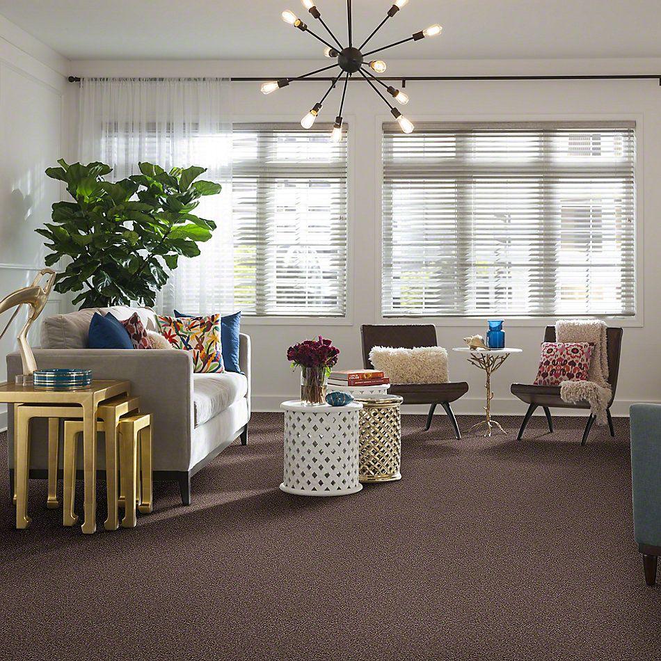 Shaw Floors Treat Me (b) Acorn 00730_E0681