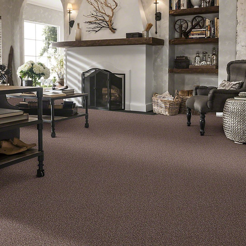 Shaw Floors Walk With Me (b) Net Acorn 00730_E0775