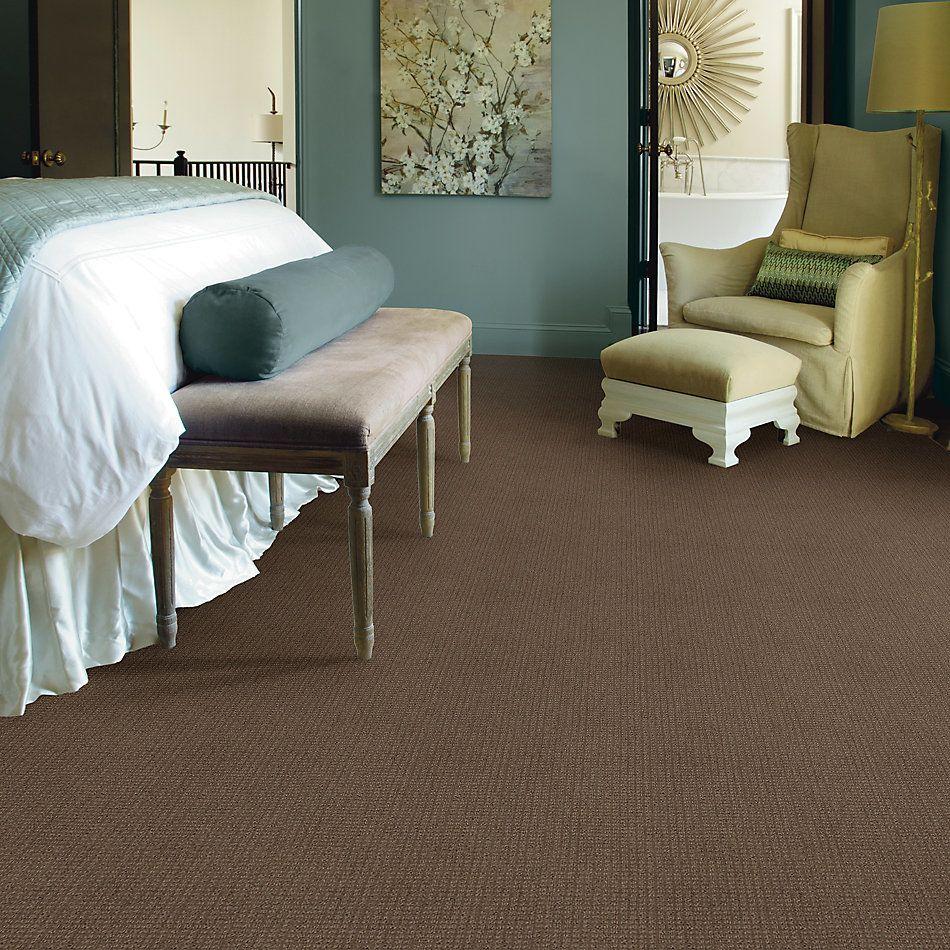 Shaw Floors Roll Special Xv872 Rustic 00730_XV872