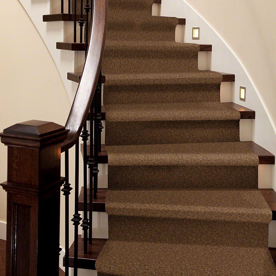 Shaw Floors Footwork Cork 00732_E0576