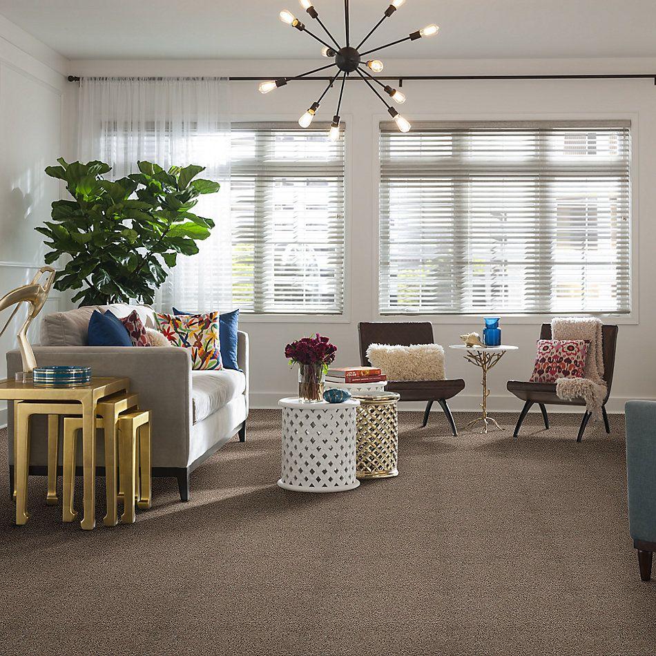 Shaw Floors Nfa/Apg Color Express Twist II Threshold 00732_NA218