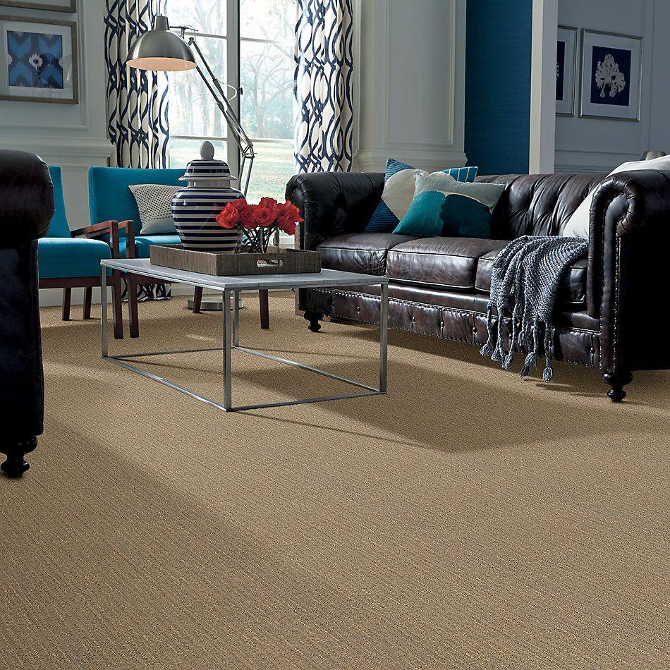 Anderson Tuftex American Home Fashions Brighton Mr. Sandman 00732_ZA776