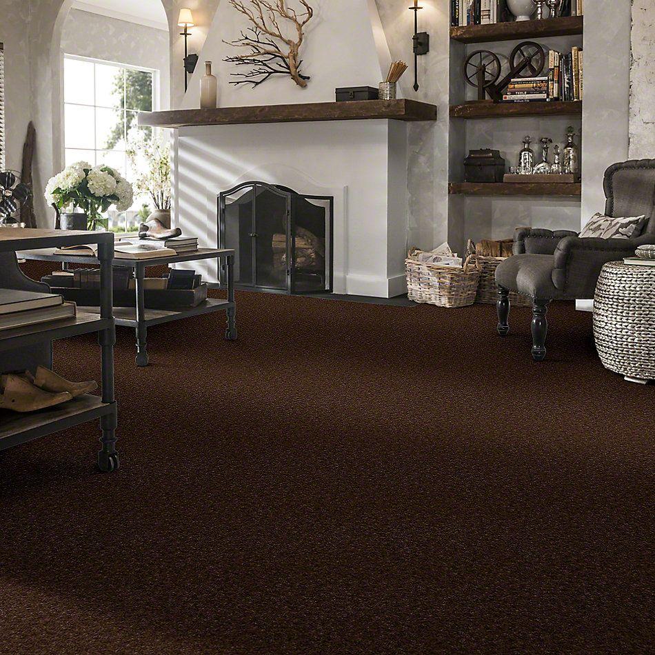 Shaw Floors Footwork Hot Chocolate 00733_E0576