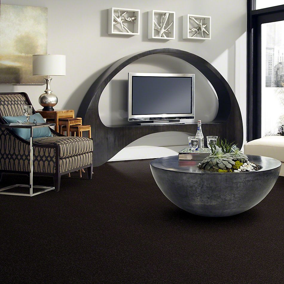 Shaw Floors Anso Colorwall Platinum Texture 12′ Buried Truffles 00734_EA572