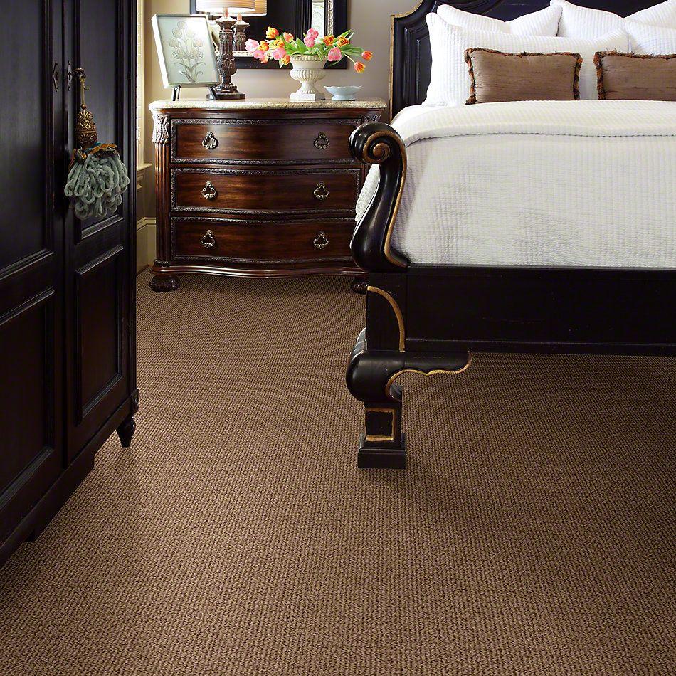 Anderson Tuftex Delightful Dream Serene Brown 00736_Z6879