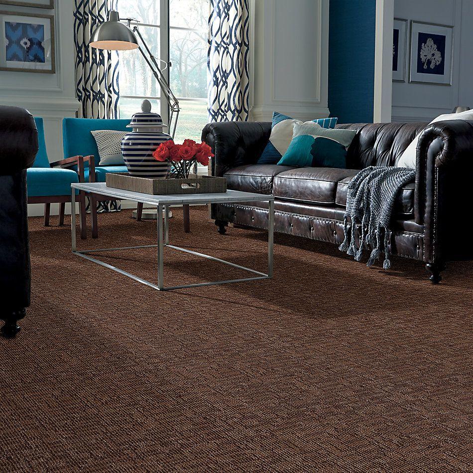 Anderson Tuftex American Home Fashions Medici Truffle 00738_ZA795