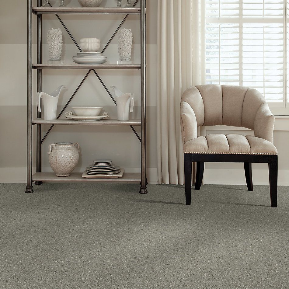 Shaw Floors Simply The Best Boundless III Net Dreamscape 00740_5E505