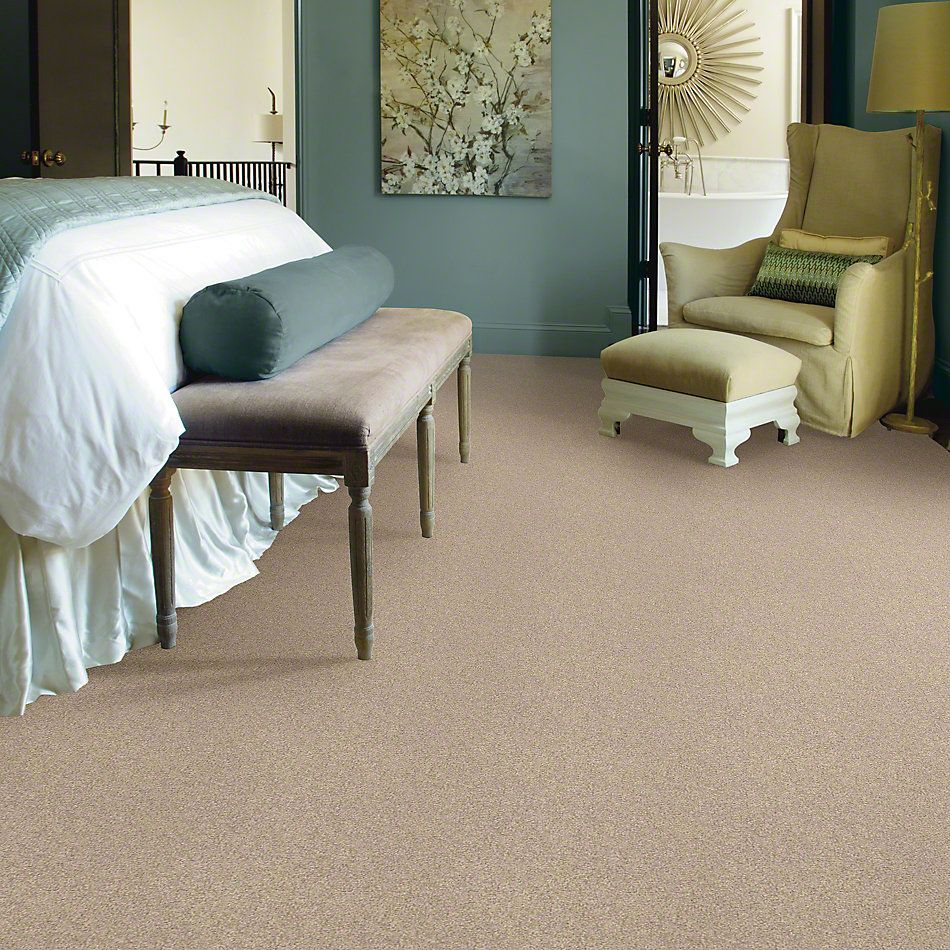 Shaw Floors Anso Colorwall Gold Texture Pueblo 00740_EA571