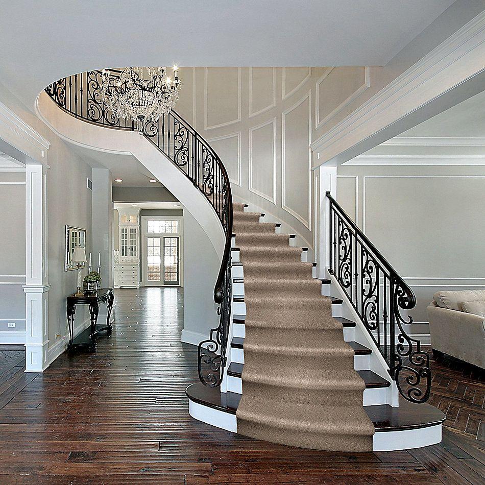 Shaw Floors Home Foundations Gold Fast Ball II Dark Roast 00740_HGP39
