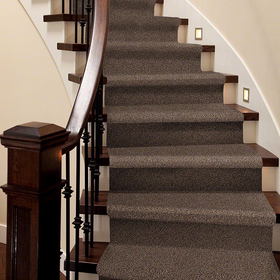 Shaw Floors Shaw Flooring Gallery In The Zone (t) Kodiak Bear 00741_5526G