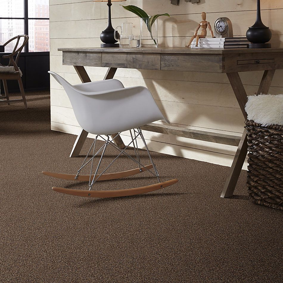Shaw Floors Shaw Design Center Toe To Toe (t) Kodiak Bear 00741_5C750