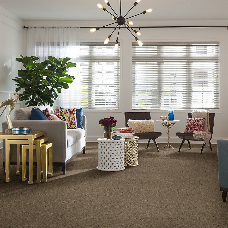 Shaw Floors Value Collections Heroic Net Windsor Tan 00741_5E386