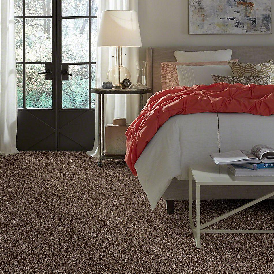 Shaw Floors Cabina Classic (t) Kodiak Bear 00741_E0591