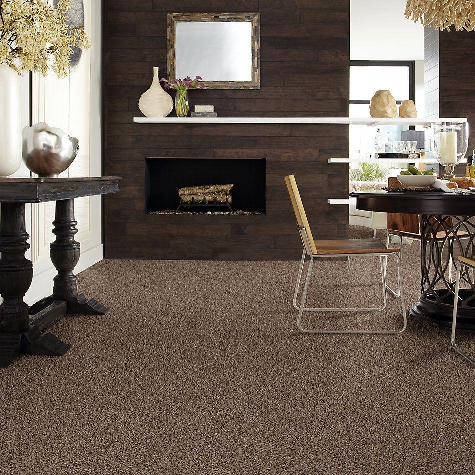 Shaw Floors Cabinanet Tweed Kodiak Bear 00741_E0665