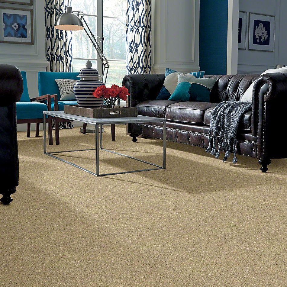 Shaw Floors Anso Colorwall Gold Texture Desert Khaki 00742_EA571
