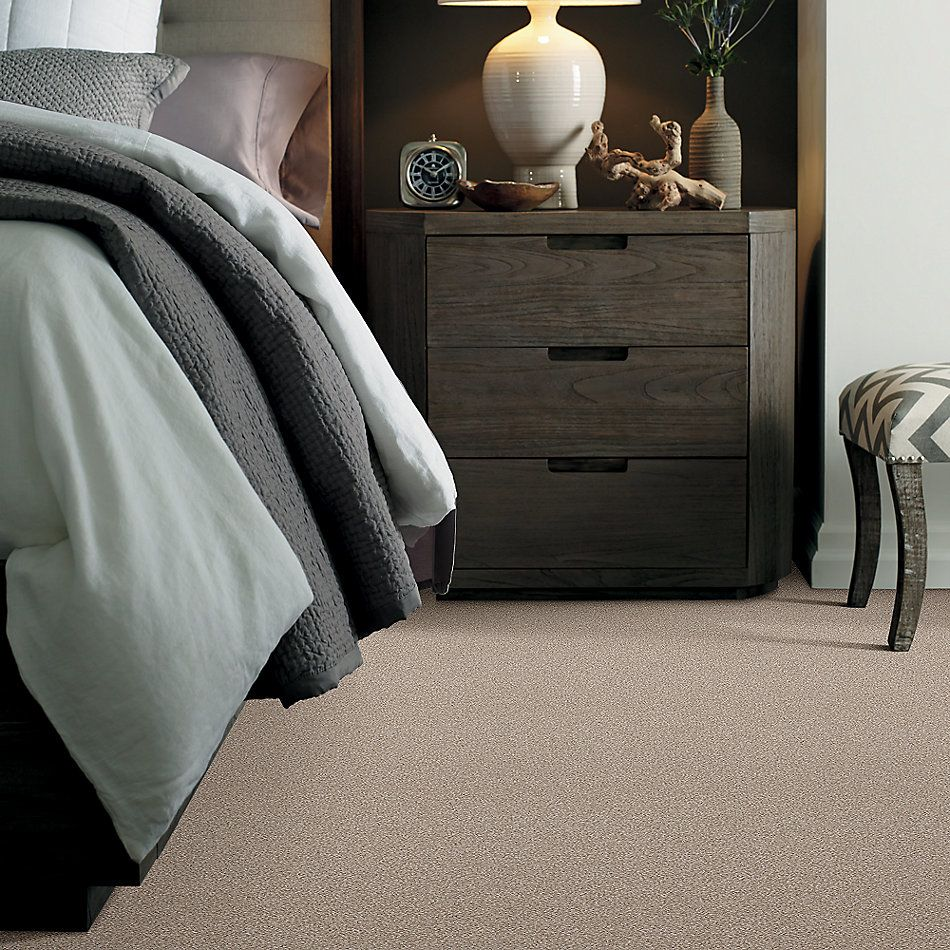 Shaw Floors Foundations Harmonious II Net Sandstone 00743_5E472