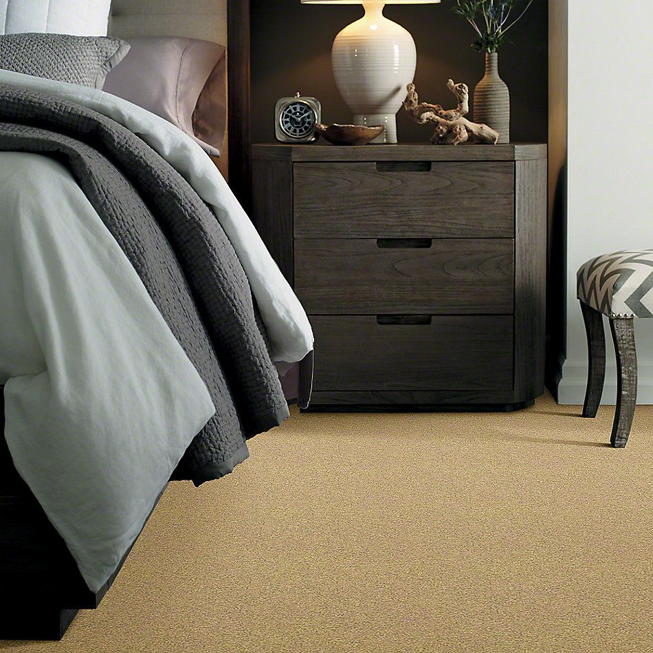 Shaw Floors Anso Colorwall Gold Texture Sahara 00744_EA571