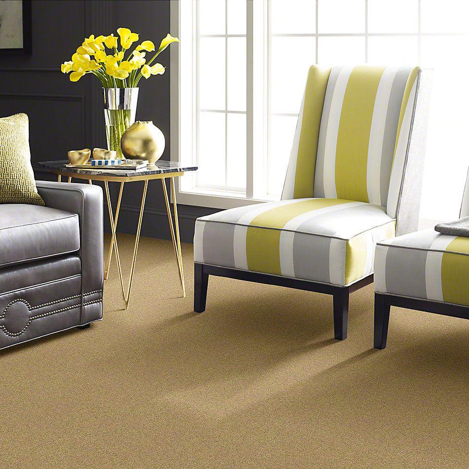 Shaw Floors Anso Colorwall Platinum Texture 12′ Sahara 00744_EA572