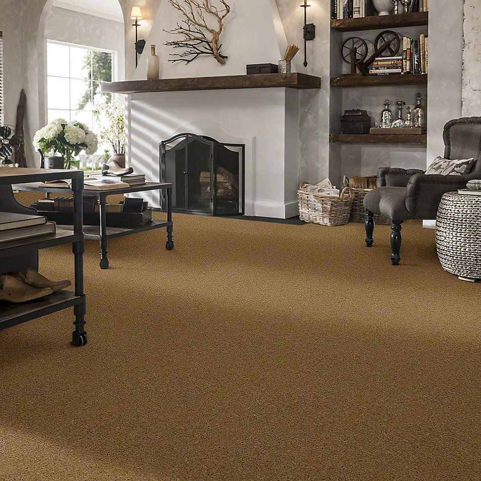 Shaw Floors Shaw Design Center All In Straw Hat 00744_QC317