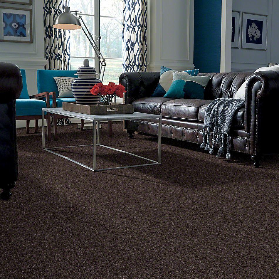 Shaw Floors Remember Me (s) French Roast 00745_E0694