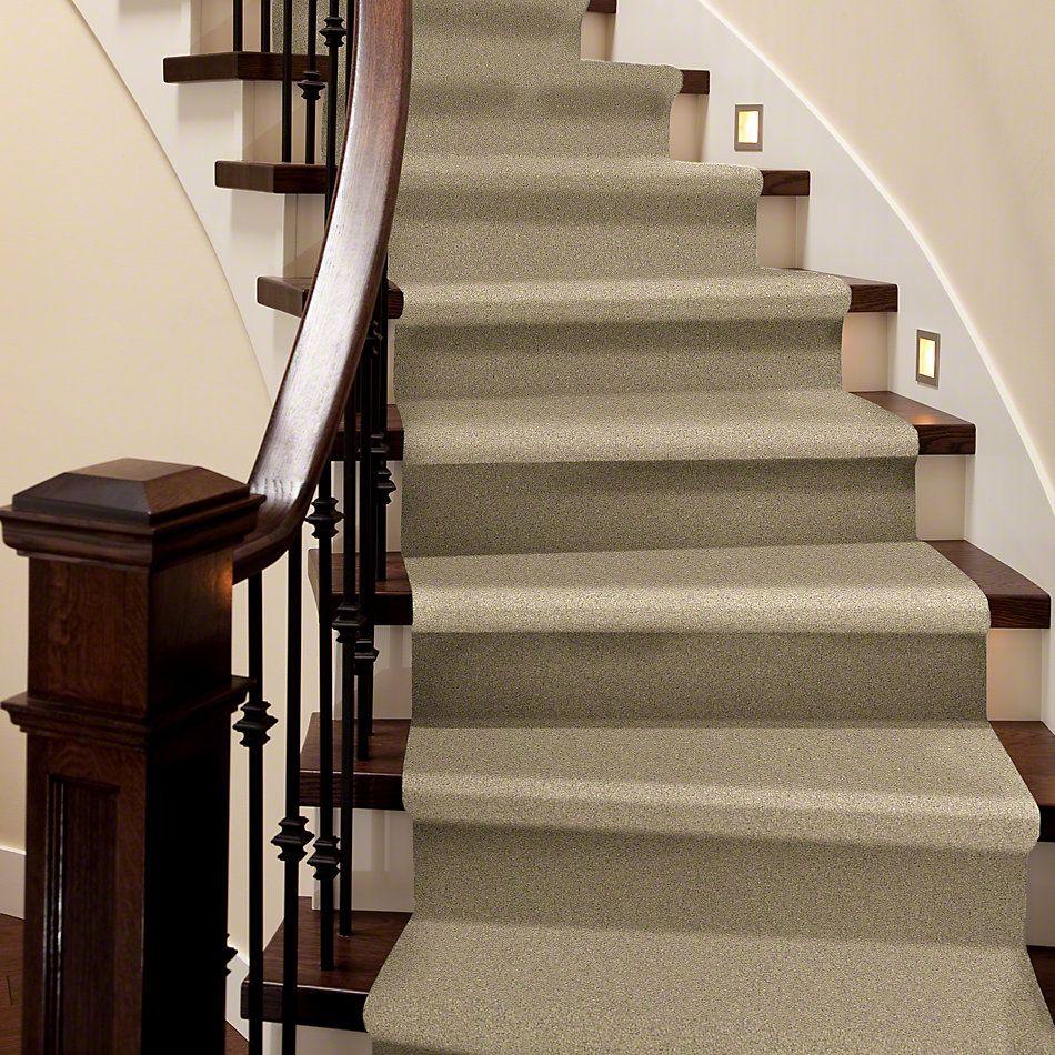 Shaw Floors Foundations Take The Floor Texture II Hazelnut 00750_5E006