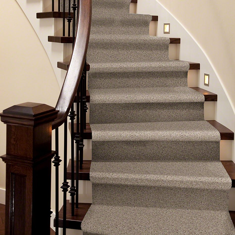 Shaw Floors Shaw Design Center Moment Of Truth Classic 00750_5C789