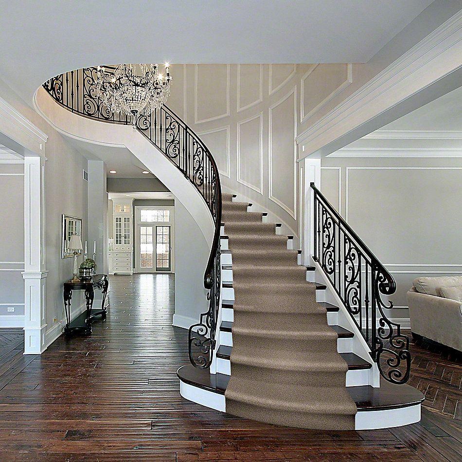 Shaw Floors Shaw Design Center Fantastical Classic 00750_5C790
