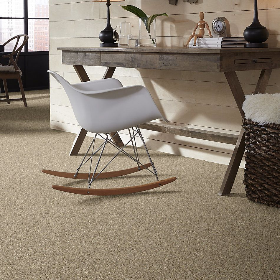 Shaw Floors Value Collections Take The Floor Twist I Net Hazelnut 00750_5E069