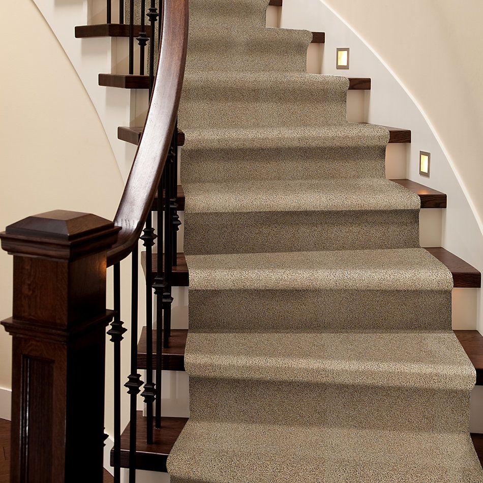 Shaw Floors Foundations Take The Floor Twist II Net Hazelnut 00750_5E070