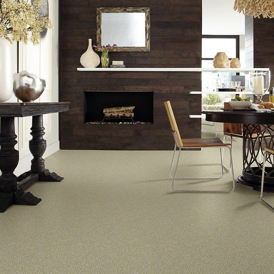 Shaw Floors Truly Relaxed Loop Rocky Coast 00750_E0657