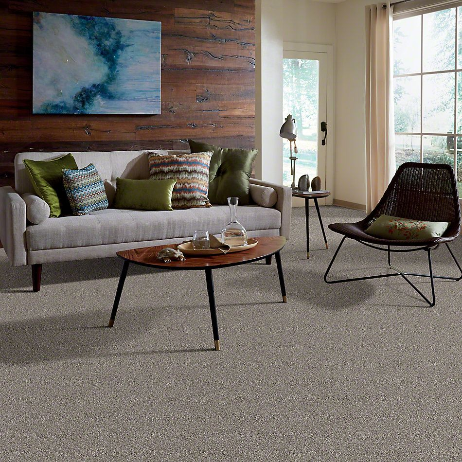 Shaw Floors Make It Yours (s) Driftwood Solid 00750_E0819