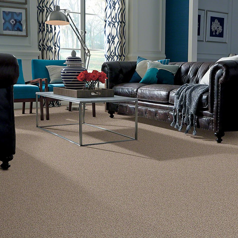Shaw Floors Value Collections You Know It Net Classic 00750_E0927