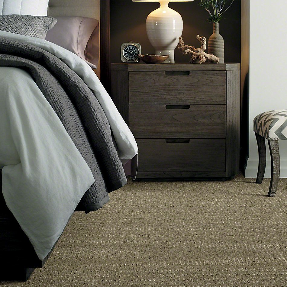 Shaw Floors SFA My Inspiration Pattern Rocky Coast 00750_EA562