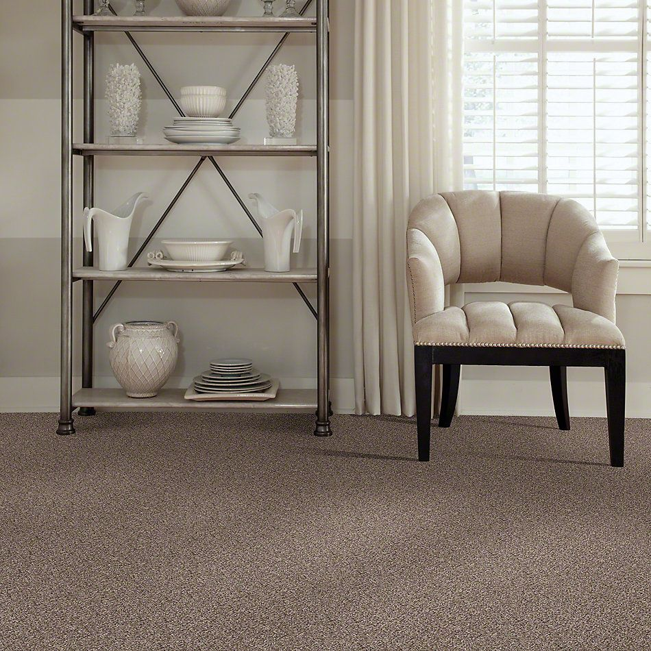 Shaw Floors Value Collections Cabana Bay (b) Net Brown Reed 00751_5E001