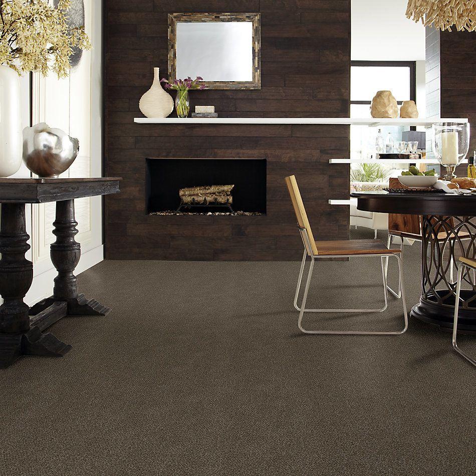 Shaw Floors Simply The Best Boundless II Chestnut Ridge 00751_5E486